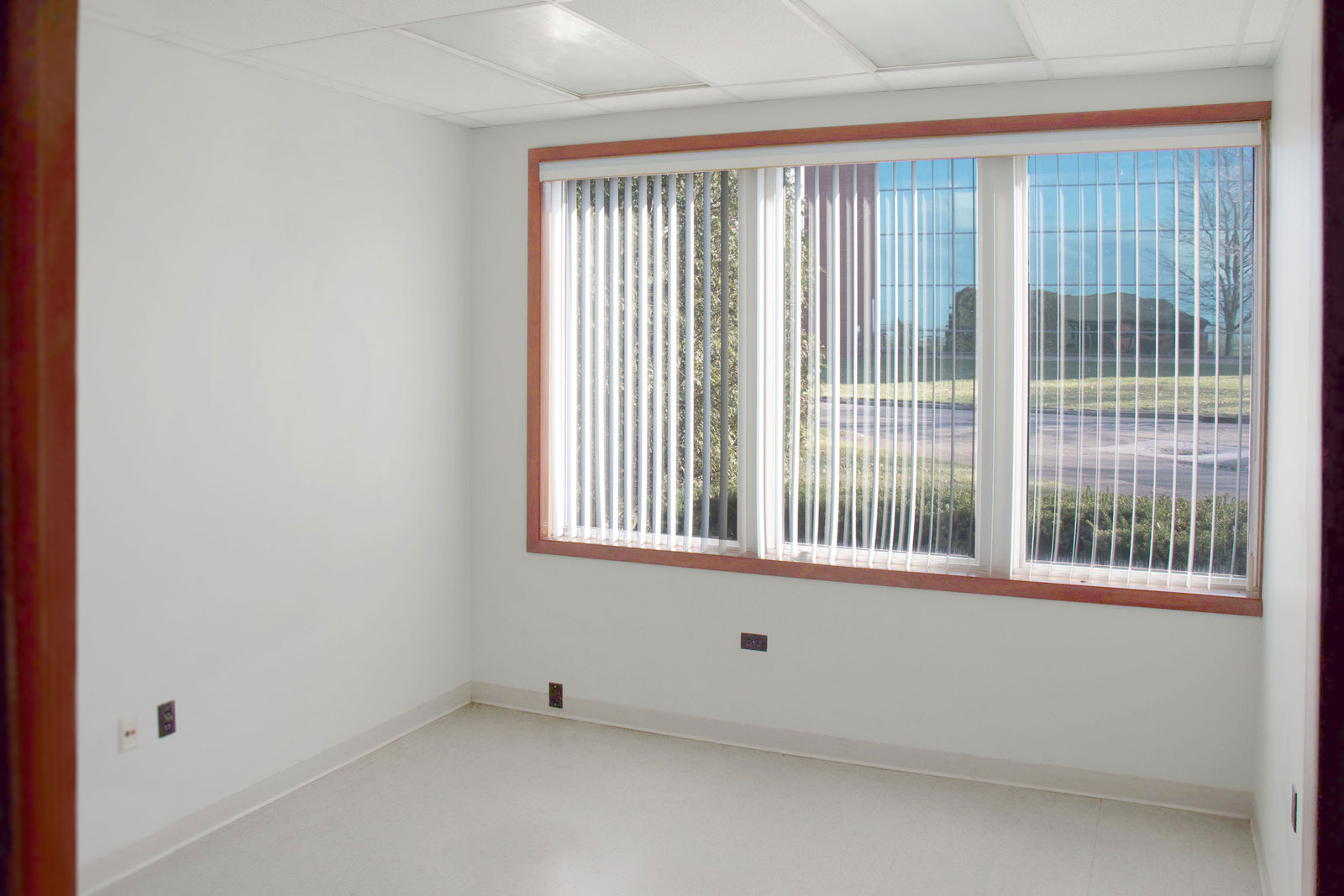 Project Office: Office Interior